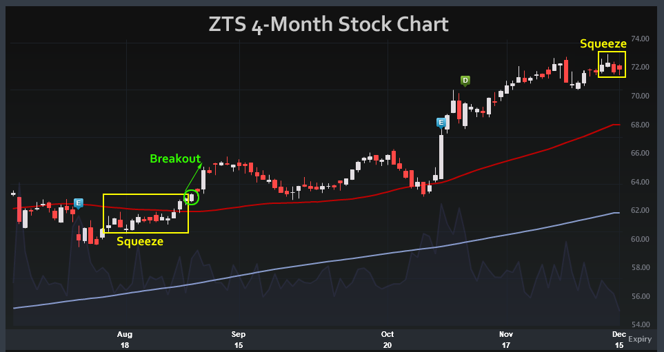 Could Zoetis Inc. (ZTS) Change Direction After Making Record High?